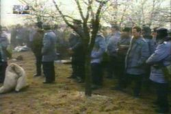 Mineriada ianuarie 1999 partea 8.mpg